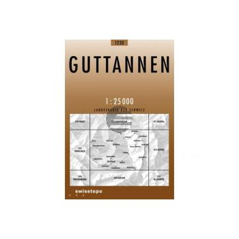 SWISSTOPO Landkarte 1230 Guttannen 1:25'000