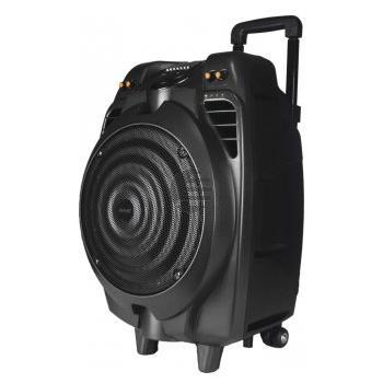 Denver TSP-502 10'' Bluetooth Trolley Lautsprecher mit Mikrofon