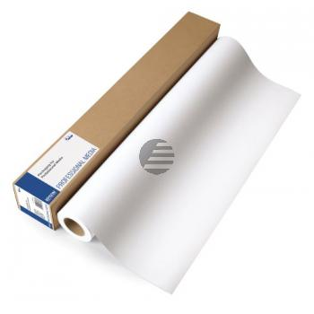 Epson Enhanced Matte Paper Roll 17 X30,5m weiß (C13S041725)