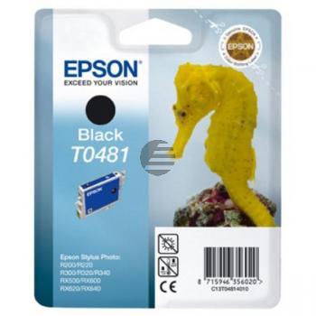 Epson Tintenpatrone schwarz (C13T04814020, T0481)