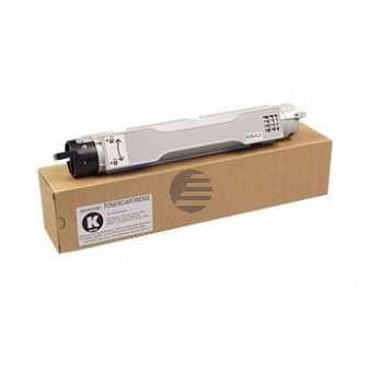 Epson Toner-Kit schwarz (C13S050091, 0091)