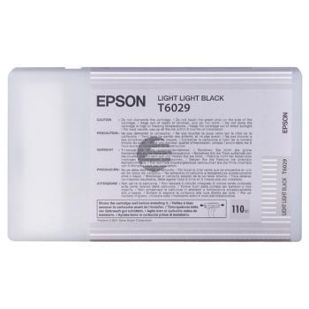 Epson Tintenpatrone schwarz light, light (C13T602900, T6029)
