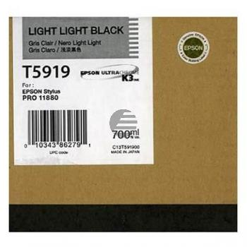 Epson Tintenpatrone schwarz light, light (C13T591900, T5919)