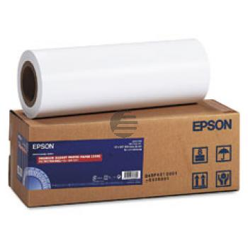 Epson Premium Glossy Photo Paper Roll 16