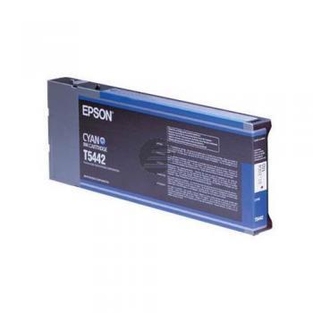Epson Tintenpatrone cyan HC (C13T544200, T5442)