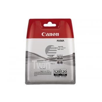 Canon Tintenpatrone 2 x schwarz (2932B012, 2 x PGI-520PGBK)